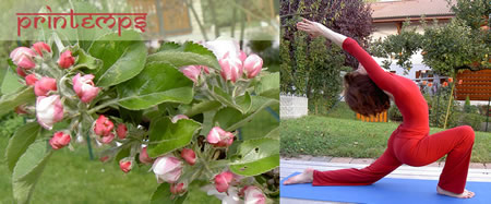 2014 week-end yoga & ayurveda - printemps