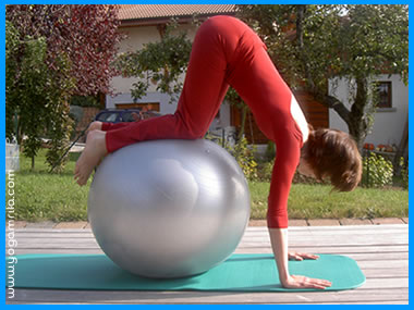 Un moment de plaisir: monter sur le ballon de gymnastique ou fit-ball