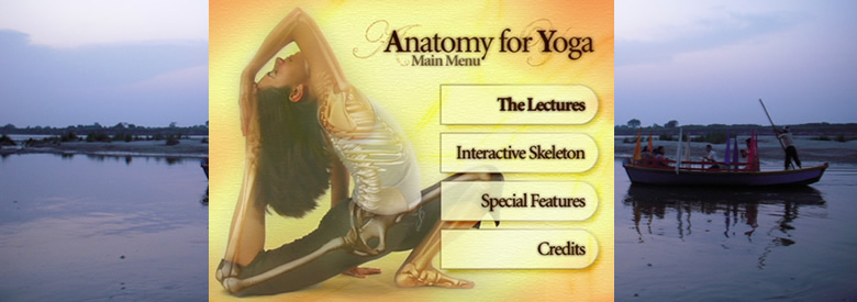 DVD « Anatomy for Yoga » de Paul Grilley