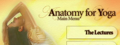 Anatomy for yoga - DVD de Paul Grilley