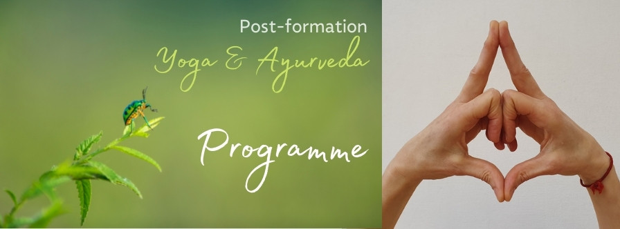 Post-formation- Programme
